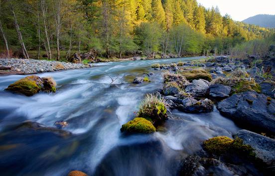 Trinity-River