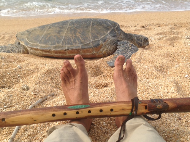 Turtle-and-my-feet (1)